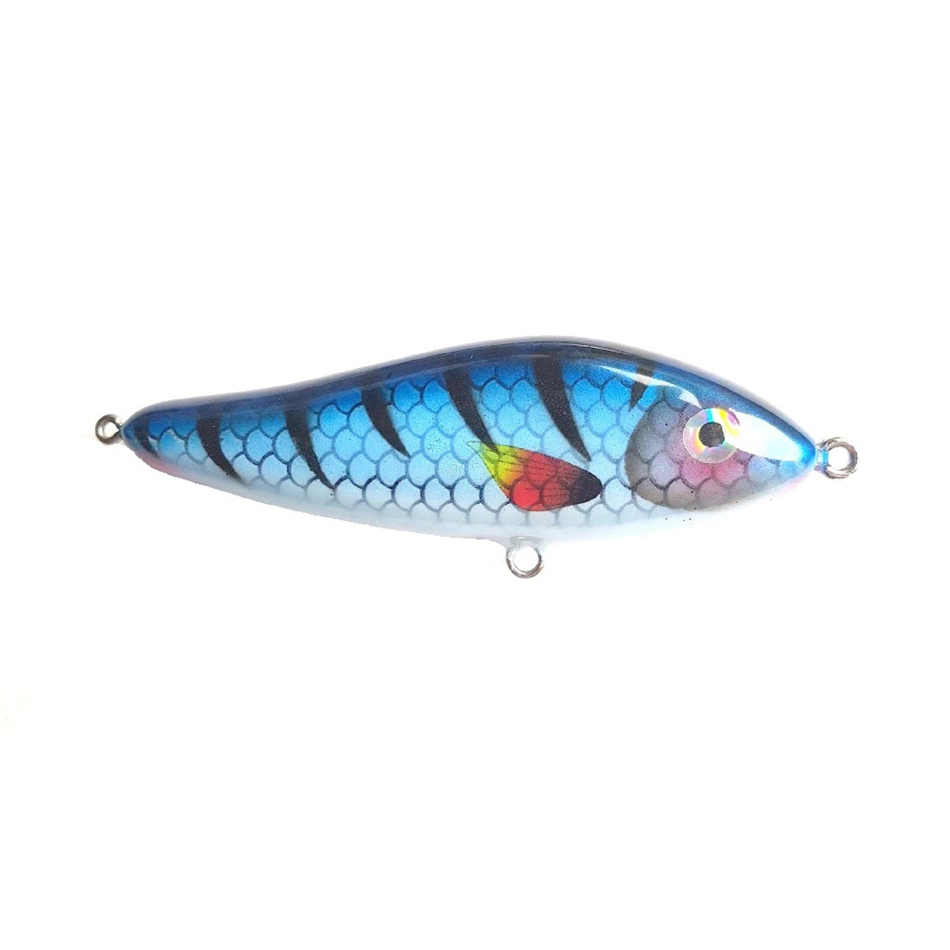 DOK Junior Blue Fish
